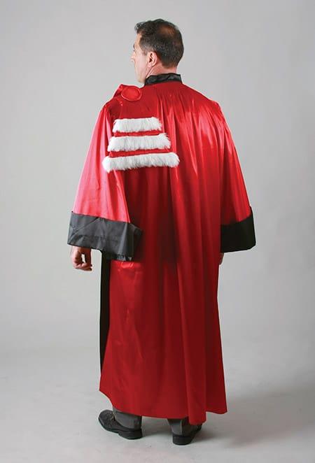 Tenue professorale pour remise de diplôme pour grandes écoles ou universités